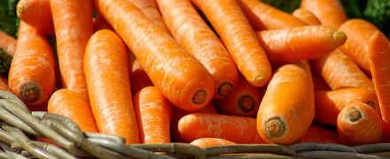 Рецепт морковника_как приготовить