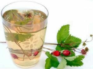 Польза земляники_чай из листьев
