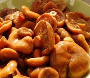 Как мариновать грибы_рыжики и опята