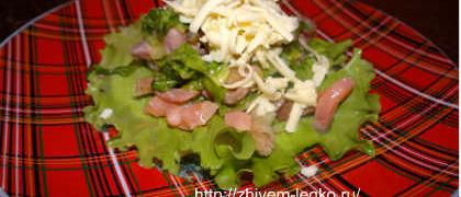 Salat iz slabosolenoj semgi12