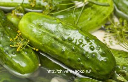 Рецепт капусты по-корейски в домашних условиях на зиму