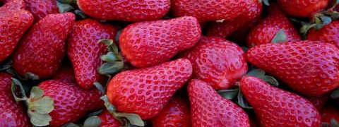 Десерты из клубники_ягода клубника