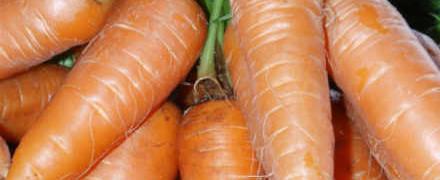 Заготовки из моркови на зиму_как сделать