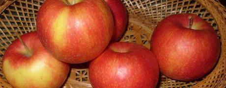 Яблочные десерты. Рецепты фаршированных яблок_в вазочке
