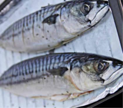 Скумбрия запеченная в фольге в духовке_выпотрошенные рыбы