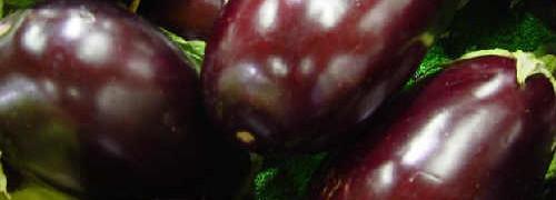 Баклажаны в томатном соке_как выглядят